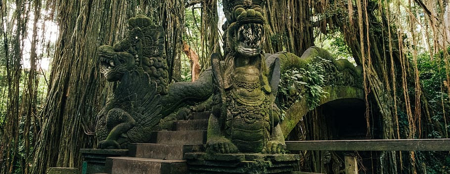 Bali 4.jpeg