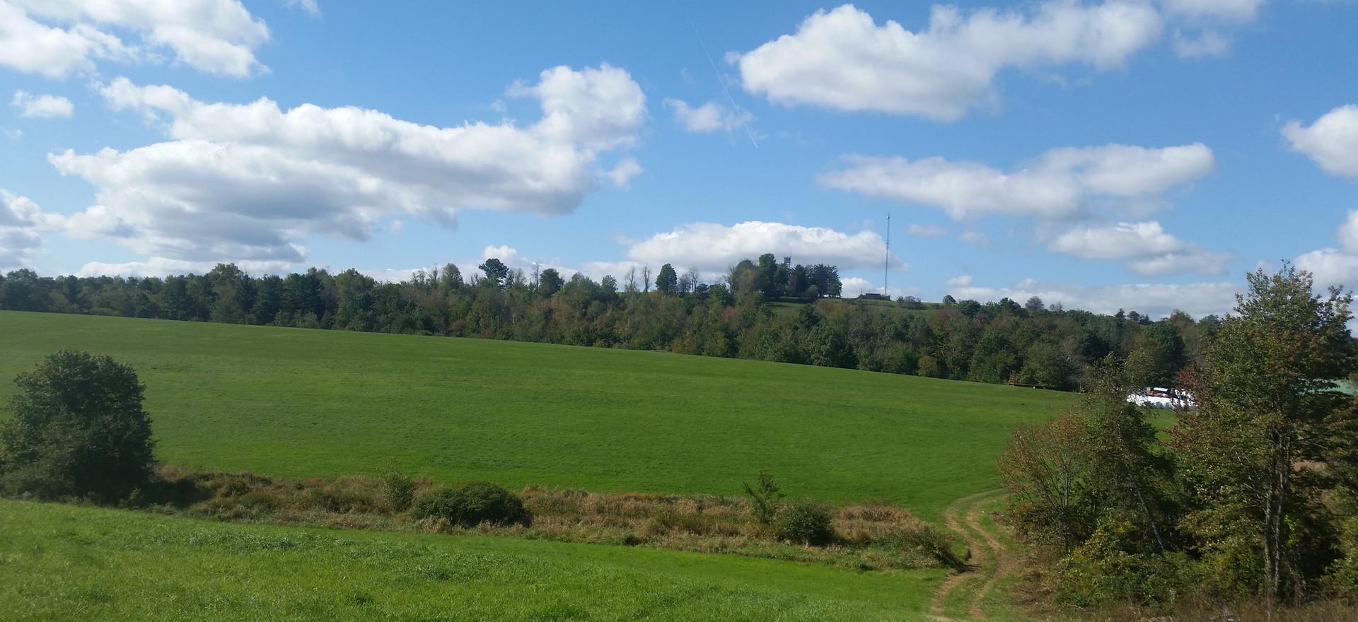 Hay Fields Off Barn
