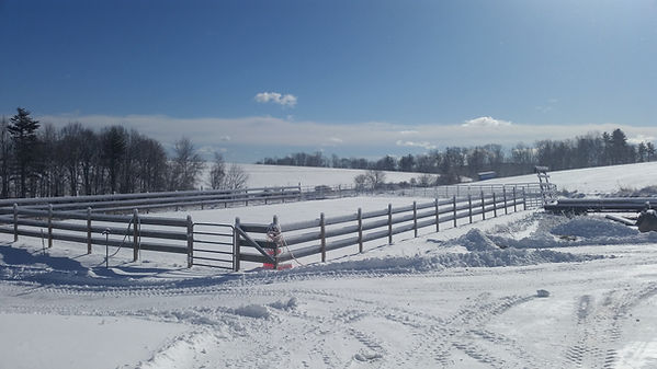 Signal Rock Stables - riding ring