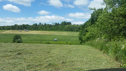Signal Rock Farm Hay Field