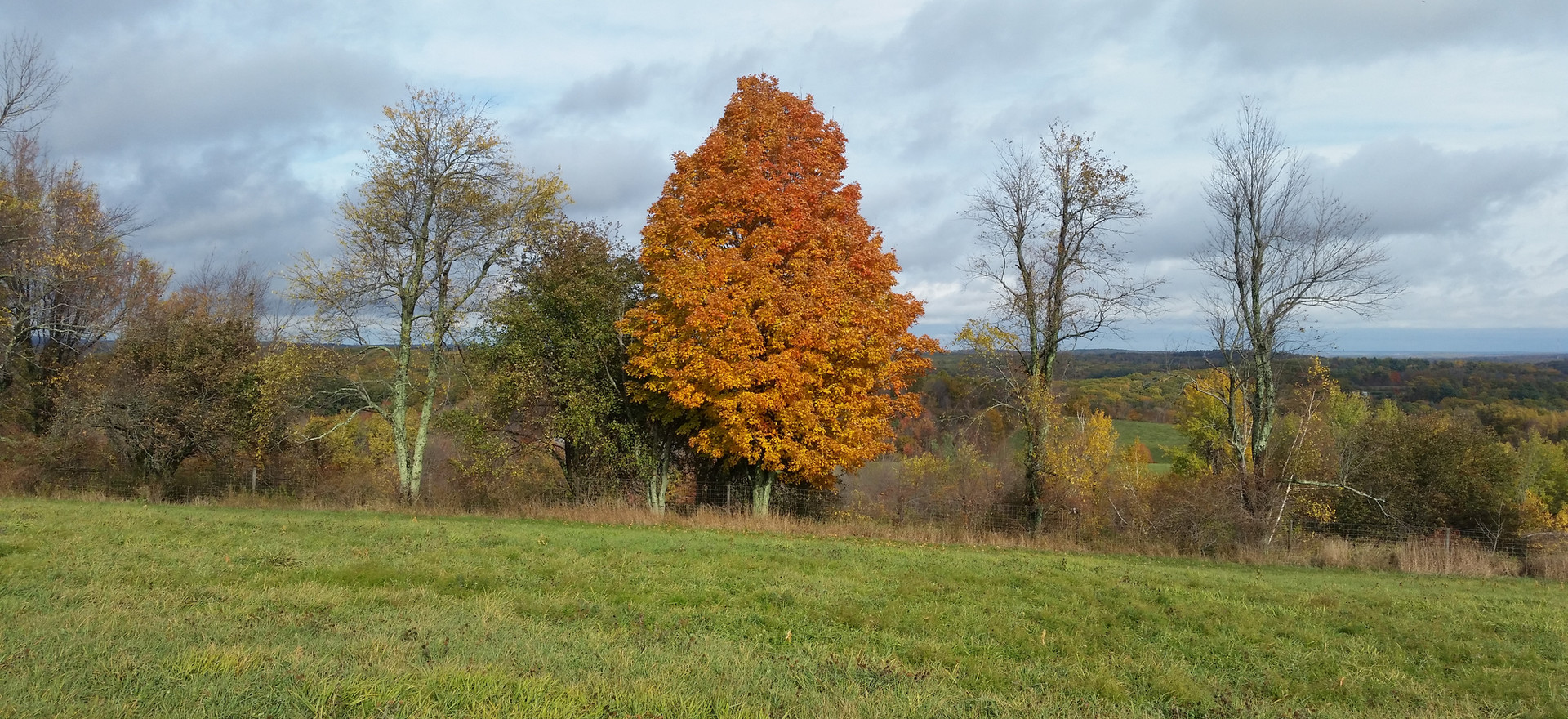 Fall on Our Hills