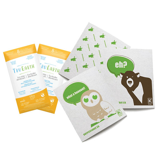 Plastic-Free Disinfectant Kit