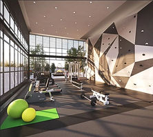 lemine central park development condo gym