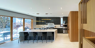Toronto McGillivray residence kitchen