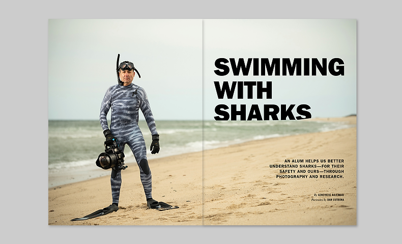 Sharks_1.png