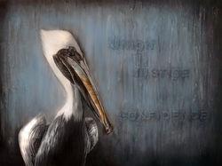 Louisiana Bird