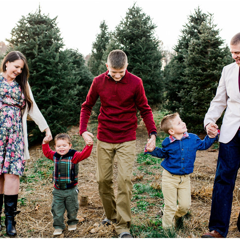 Christmas Tree Farm Family Portraits // The Hallidays // Baltimore Maryland Photographer