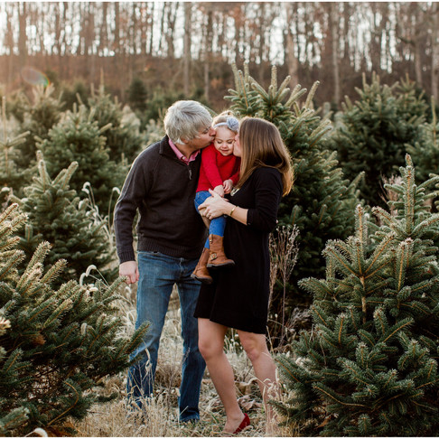 Holiday Family Portraits // The Shearers // Maryland Portrait Photographer