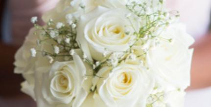Simple Roses Bridesmaids