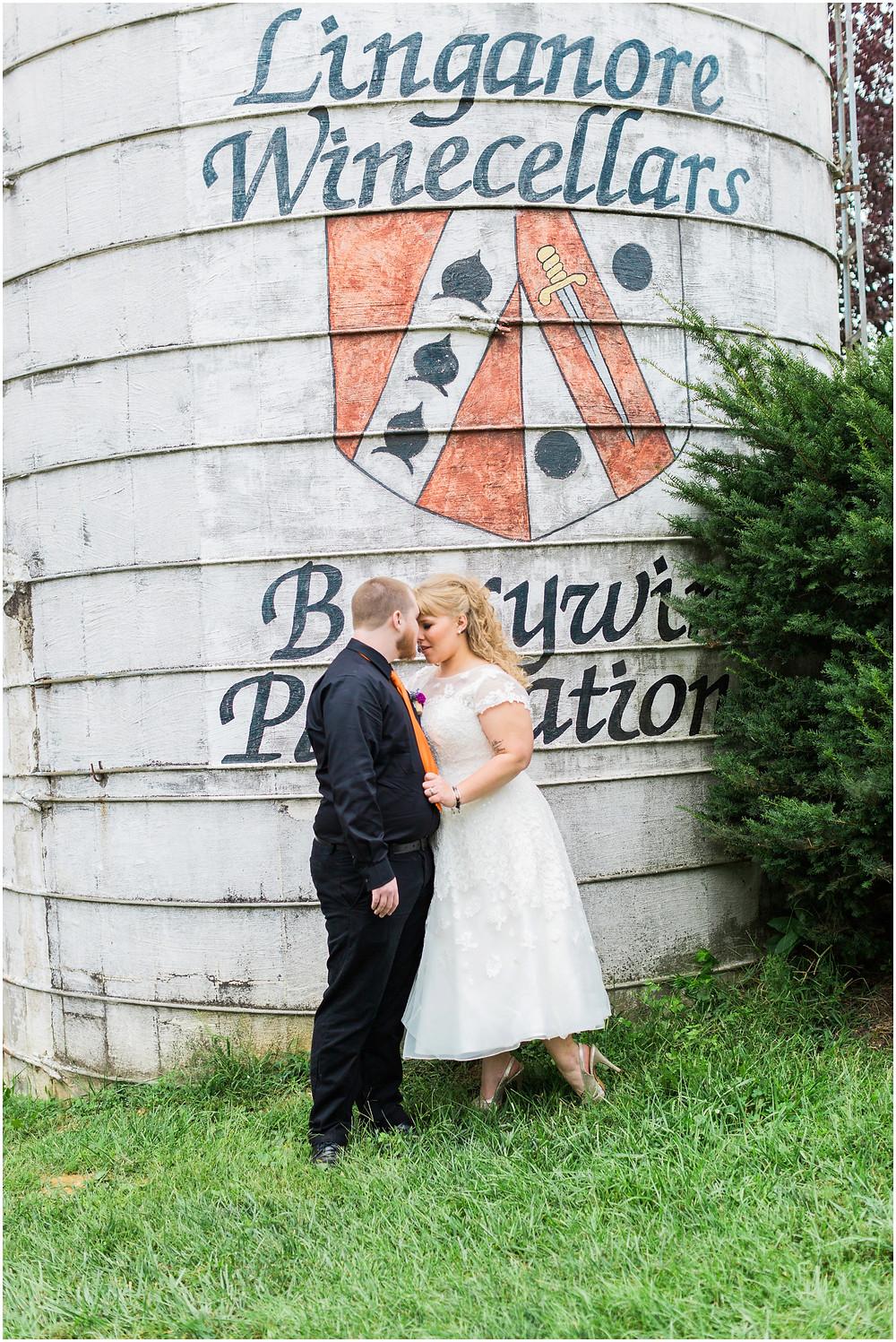 linganore-winery-maryland-wedding-photographer-mount-airy