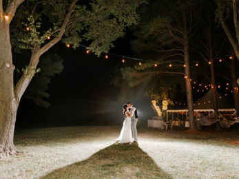 Alicia Wiley Photography