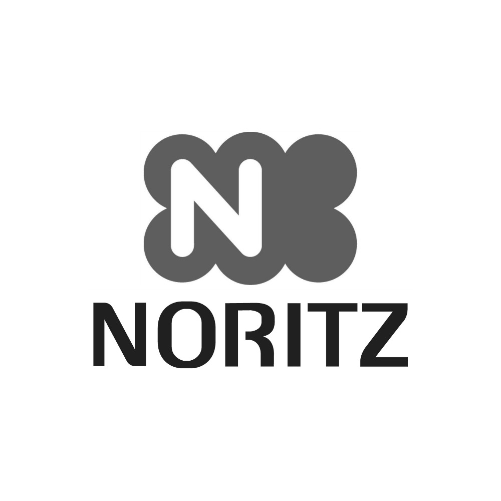 Noritz Plumbers Repair Water Heater