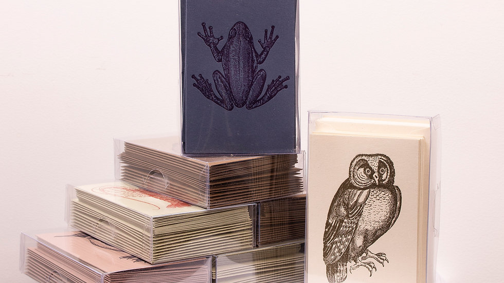 Rossi Eco Friendly Note Cards