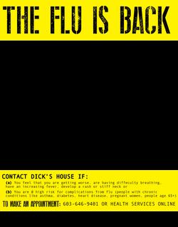 Flu is Back Journal