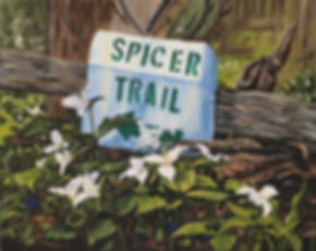 Spicer Trail.jpg