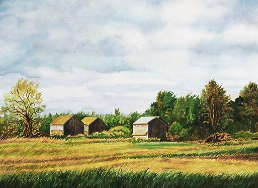 Old Tobacco Barns - Pioneer Line.jpg