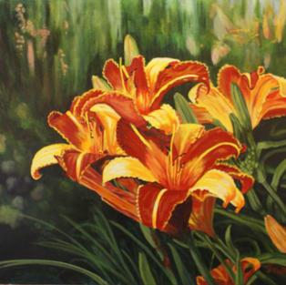 Bi-Colored Tiger Lillies