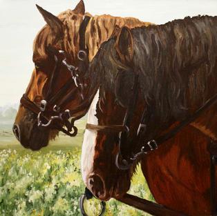 A Pair of Farm Horses