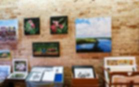 Gallery PIC 3.jpg