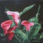 Calla Lillies Closeup.jpg