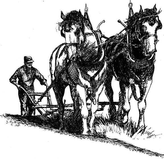 old plowman.jpg