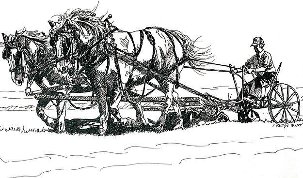 clayton sulky plow.jpg