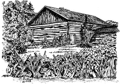 Log Barn with Stump Fence.jpg