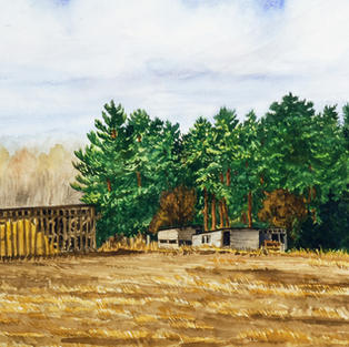 Corn Crib on Marsh Line - Dunwich