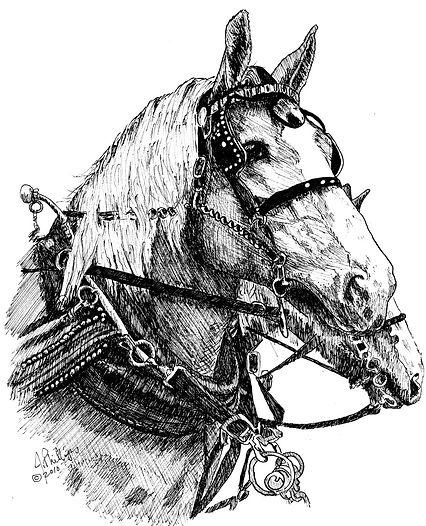 Belgian Horse Heads.jpg