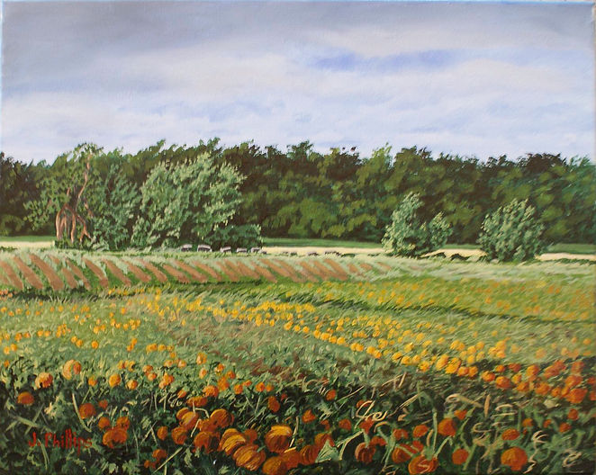 Field of Flowers.jpg
