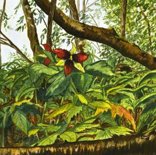 Garnet Solitaire - Red Trillium