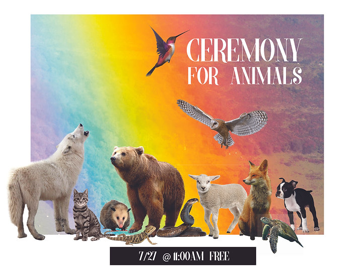 animal_ceremony-01.jpg