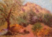 Plein Aire Smoke Tree.jpg