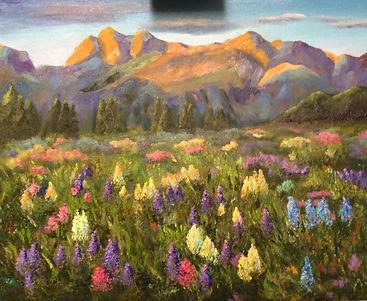 mountain meadow_edited-1.jpg