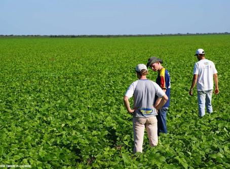 Ingeniería agrónoma, la profesión de aquellos que respetan el medio ambiente y desean su aprovechami
