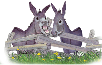 DONKEY BUTTON.png