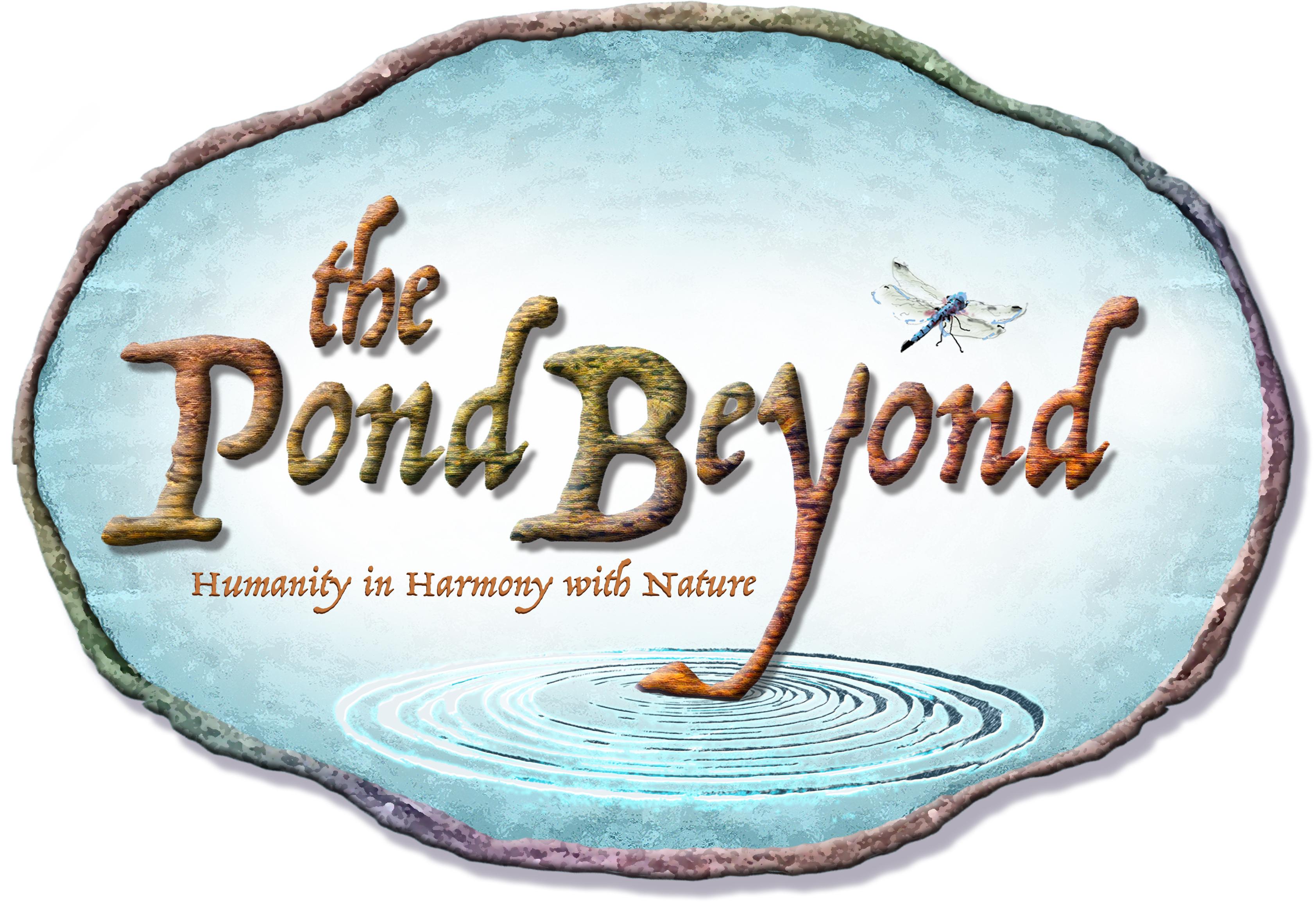 The Pond Beyond Privacy
