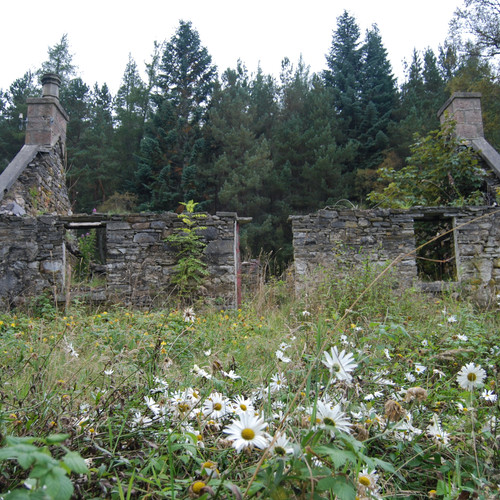 Old Ruins in the Highlands