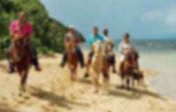 colon-horseback-riding-vieques-puerto-ri