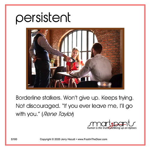 S100 Persistent