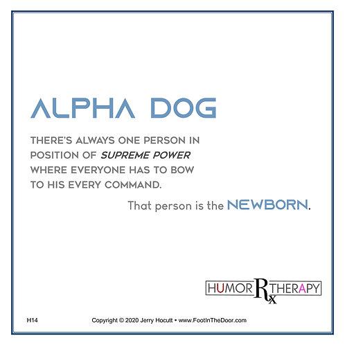 H14 Alpha Dog