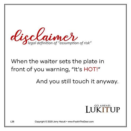 L28 Disclaimer