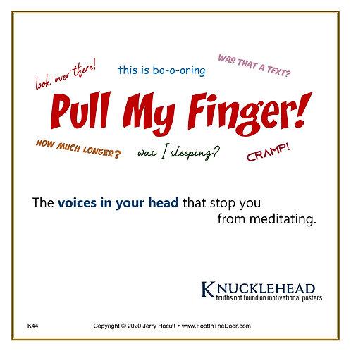 K44 Pull My Finger