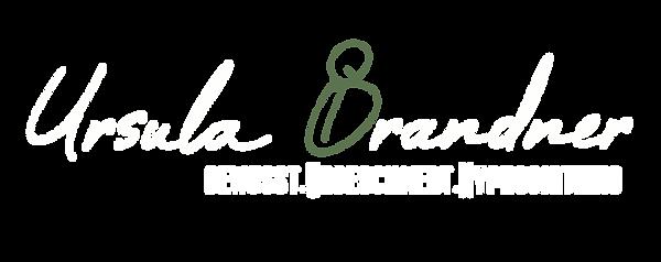 Logo_brandner_final_weißHG.png