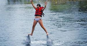 Delfinarium, dolphins show, Cienfuegos