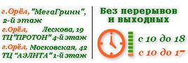 shapka555NG34.png