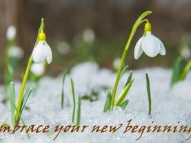 Seeking God in New Beginnings