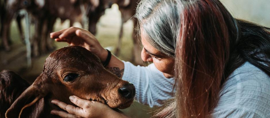 Meet the Multi-tasking Maven of Milk & Meadows