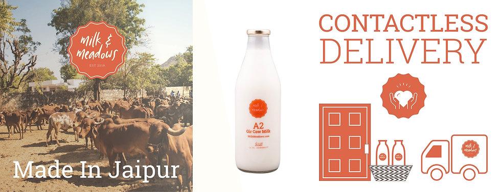 desi-cow-milk-delivery-in-jaipur.jpg