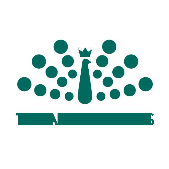 Teja Ventures
